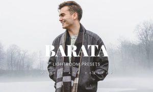 Barata Lightroom Presets Dekstop and Mobile