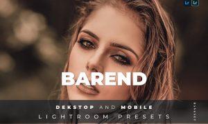Barend Desktop and Mobile Lightroom Preset