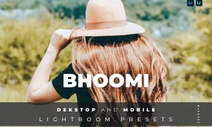 Bhoomi Desktop and Mobile Lightroom Preset