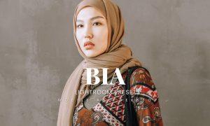 Bia Lightroom Presets Dekstop and Mobile