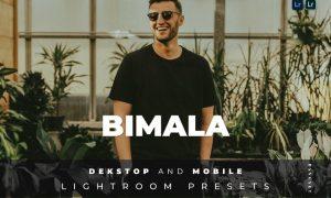 Bimala Desktop and Mobile Lightroom Preset