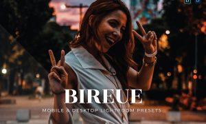 Bireue Mobile and Desktop Lightroom Presets