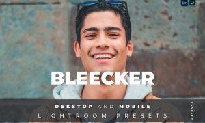 Bleecker Desktop and Mobile Lightroom Preset