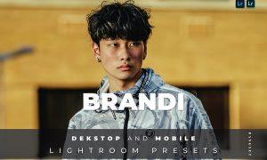 Brandi Desktop and Mobile Lightroom Preset