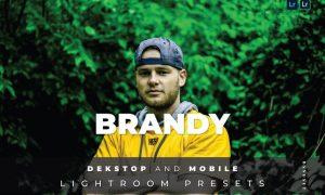 Brandy Desktop and Mobile Lightroom Preset