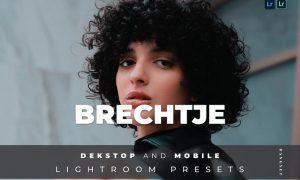 Brechtje Desktop and Mobile Lightroom Preset