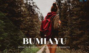 Bumiayu Mobile and Desktop Lightroom Presets