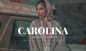 Carolina Lightroom Presets Dekstop and Mobile