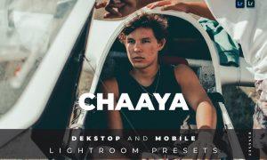 Chaaya Desktop and Mobile Lightroom Preset