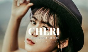 Cheri Lightroom Presets Dekstop and Mobile