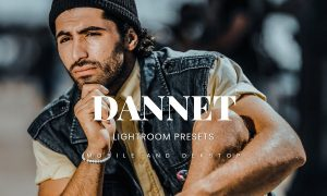 Dannet Lightroom Presets Dekstop and Mobile