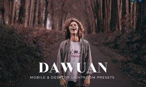 Dawuan Mobile and Desktop Lightroom Presets