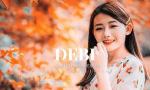 Debi Lightroom Presets Dekstop and Mobile