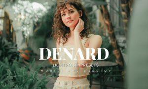 Denard Lightroom Presets Dekstop and Mobile