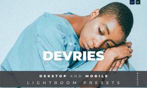 Devries Desktop and Mobile Lightroom Preset