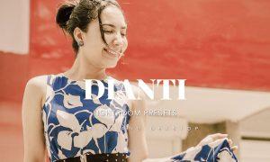 Dianti Lightroom Presets Dekstop and Mobile