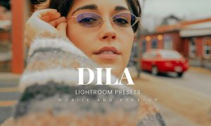 Dila Lightroom Presets Dekstop and Mobile