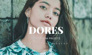 Dores Lightroom Presets Dekstop and Mobile