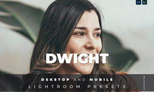 Dwight Desktop and Mobile Lightroom Preset