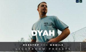Dyah Desktop and Mobile Lightroom Preset