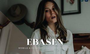 Ebasen Mobile and Desktop Lightroom Presets
