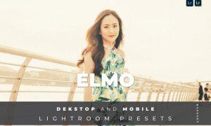 Emily Desktop and Mobile Lightroom Preset
