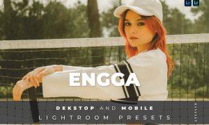 Engga Desktop and Mobile Lightroom Preset