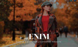 Enim Mobile and Desktop Lightroom Presets