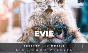 Evie Desktop and Mobile Lightroom Preset