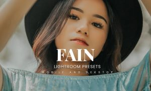 Fain Lightroom Presets Dekstop and Mobile