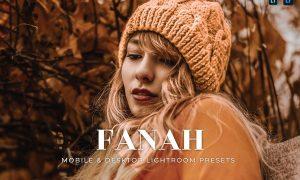 Fanah Mobile and Desktop Lightroom Presets