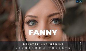 Fanny Desktop and Mobile Lightroom Preset