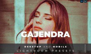 Gajendra Desktop and Mobile Lightroom Preset