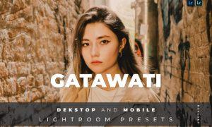 Gatawati Desktop and Mobile Lightroom Preset