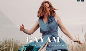 Gayam Mobile and Desktop Lightroom Presets