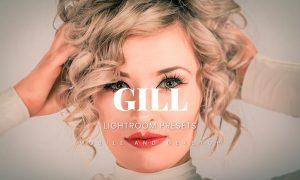 Gill Lightroom Presets Dekstop and Mobile