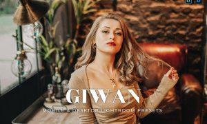 Giwan Mobile and Desktop Lightroom Presets