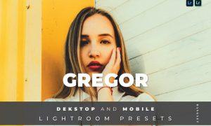 Gregor Desktop and Mobile Lightroom Preset