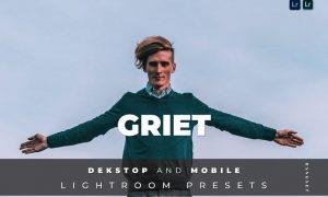 Griet Desktop and Mobile Lightroom Preset