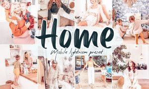 Home Lightroom Presets 5868204