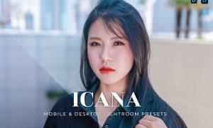 Icana Mobile and Desktop Lightroom Presets