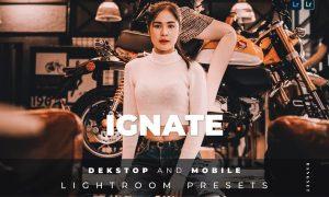 Ignate Desktop and Mobile Lightroom Preset