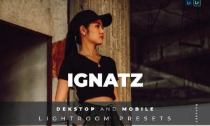 Ignatz Desktop and Mobile Lightroom Preset