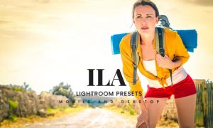 Ila Lightroom Presets Dekstop and Mobile