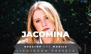 Jacomina Desktop and Mobile Lightroom Preset
