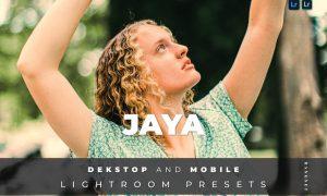 Jaya Desktop and Mobile Lightroom Preset