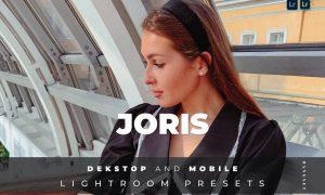 Joris Desktop and Mobile Lightroom Preset