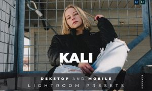 Kali Desktop and Mobile Lightroom Preset
