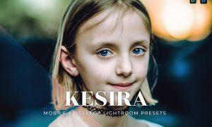 Kesira Mobile and Desktop Lightroom Presets