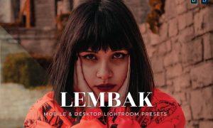 Lembak Mobile and Desktop Lightroom Presets